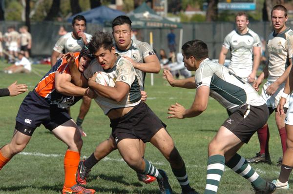 Rookie Flanker Salvador Guevera crashes the ball up against Cal State Fullerton at CSU Long Beach. (Photo Teresa Piper)