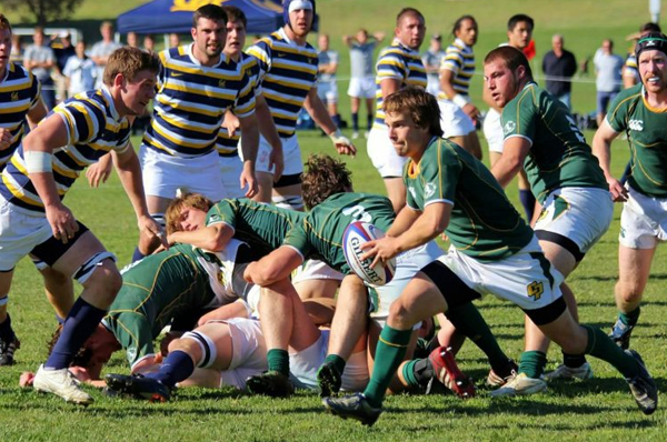 Mustang Scrumhalf Thomas Leacox against Cal in San Luis Obispo in 2011. Cal Poly that day 22-20. Photo Gary Tyerman