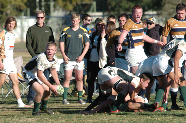 2nd XV scrumhalf Chris Codding scored two tries against the UC Davis 2nd XV. Photo Jan Piper
